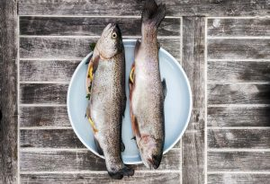 Was Sie vor dem Verzehr von Fisch wissen sollten